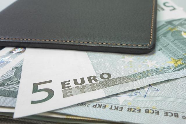 bankovky v pouzdru.jpg