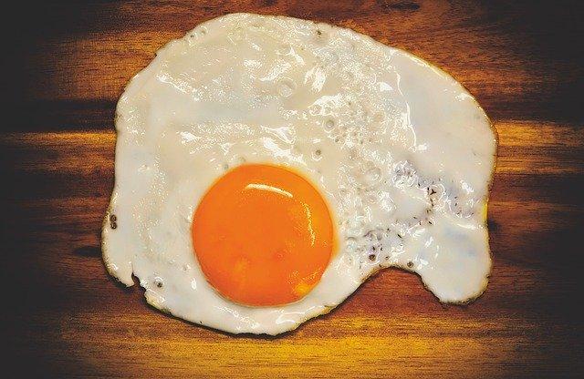 protein ve žloutku